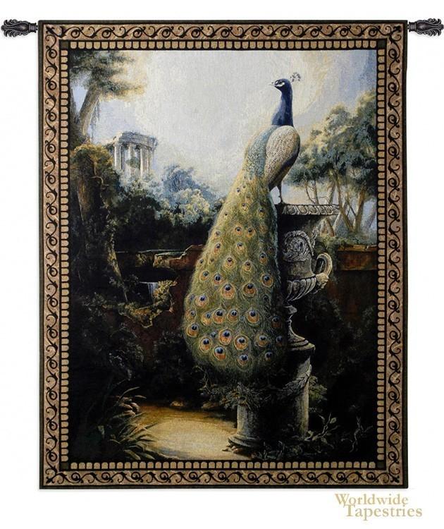 Peacock Luogo Tranquillo