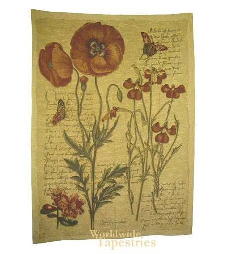 Flanders Poppies II