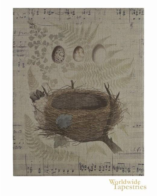 Nest & Egg
